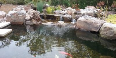 The Importance of Pond Maintenance Each Spring & Fall, Columbia, Missouri