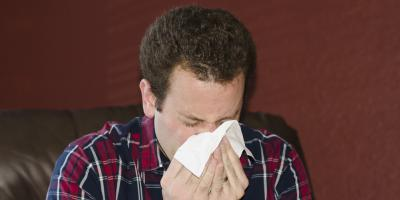 Carpet Cleaning & Other Strategies for Dealing With Dust Allergies, Elko, Nevada