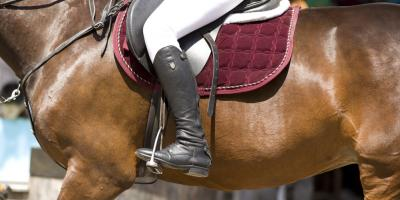 A Guide to Buying the Perfect Pair of Riding Boots, Lebanon, Ohio