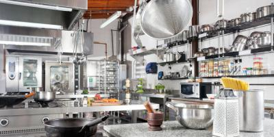 4 Roach Control Tips to Prevent Infestation in Your Restaurant , Eagan, Minnesota