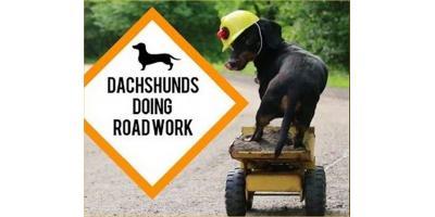 road construction near LVH, ,