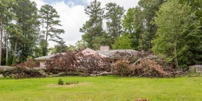 When Should I Call T & L Tree and Landscape LLC for Emergency Tree Service?, Macedon, New York