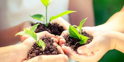 7 Interesting Earth Day Facts, Rochester, New York