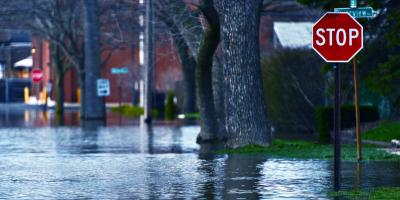 What Does the Water Damage Restoration Process Entail?, East Rochester, New York
