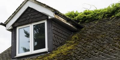 How to Prevent Moss From Growing on a Roof, Anchorage, Alaska
