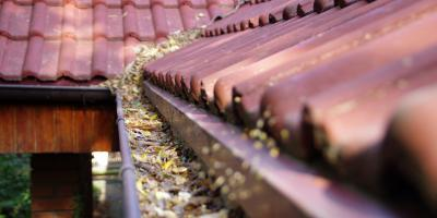 3 Reasons You Should Clean Your Gutters, Yellow Springs, Ohio