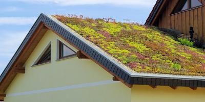 Roofing Contractors Discuss 3 Benefits of Rooftop Gardens, Onalaska, Wisconsin