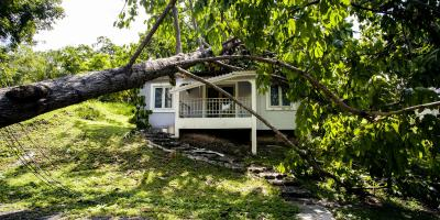 How to Recover From Storm Damage, St. Augustine, Florida