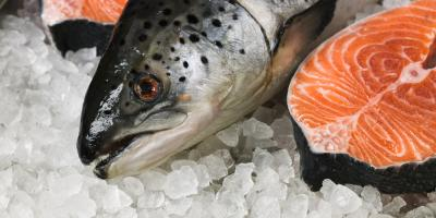 3 Healthy Reasons to Add Salmon to Your Diet, Honolulu, Hawaii