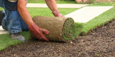 What's the Difference Between Topsoil & Garden Soil?, Cameron, North Carolina