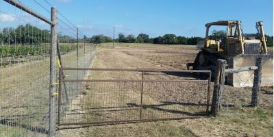 Land Development & Construction: Ripping Vineyards, Boerne, Texas