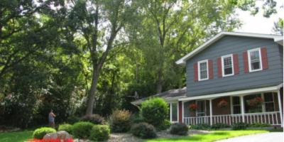 Expert Tree Service Debunks 5 Tree Planting Myths, Royalton, Minnesota
