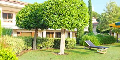 The Facts About What a Professional Landscaper Can Do for You , Scottsville, New York