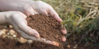 What to Know About Topsoil Screening, Manchester, Connecticut