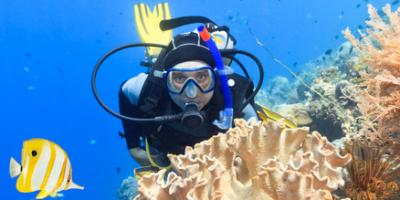Testimonials to the Best Scuba Diving Company in Waikiki, Honolulu, Hawaii