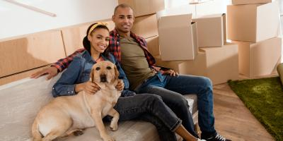 3 Tips for Selling a Home With Pets, Ronan, Montana