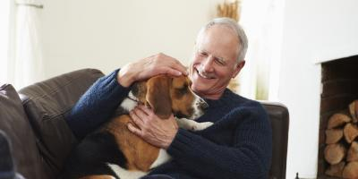 3 Benefits of Incorporating Pet Therapy Into Senior Care, Montgomery, Ohio