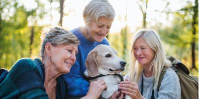 3 Benefits of Pet Therapy for Seniors, Medina, Ohio
