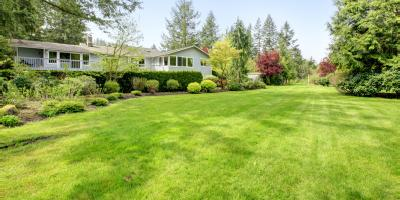 3 Care Tips for Your Septic Drain Field, Chillicothe, Ohio