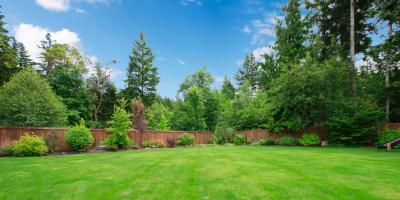 How to Spot Septic System Drain Field Failure, Yoder, Oregon