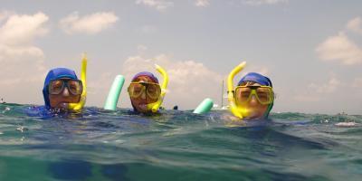 3 Reasons Snorkel Rental is a Better Option Than Purchasing Gear, Kealakekua, Hawaii