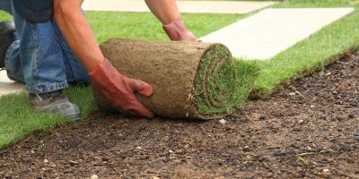 5 Ways Turfgrass Sod Benefits You & the Environment, Wahiawa, Hawaii