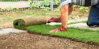 4 Key Benefits of Sod for Your Yard, Hill, Arkansas