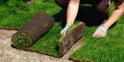 Top 4 FAQ About Sod Installation, Columbia, Missouri