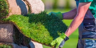 Why Is Sod Installation Better Than Seeding?, St. Peters, Missouri