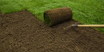 New Lawn Prep: How to Get Your Yard Ready for Sod Installation , O'Fallon, Missouri