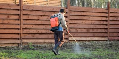 4 FAQ About Lawn Fertilization, New Market, North Carolina