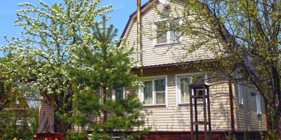 What to Do About Problem Trees on a Neighbor's Property, York, South Carolina