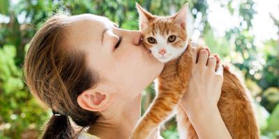 How Spay & Neuter Procedures Affect Pet Hormones & Weight, Newport-Fort Thomas, Kentucky
