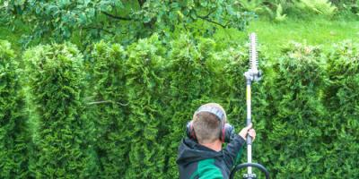 3 Reasons to Seek Out a Servicing Stihl® Dealer for Lawn Equipment, Milledgeville, Georgia