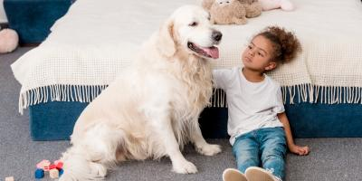 4 Reasons to Spay or Neuter Your Pet, Florence, Kentucky