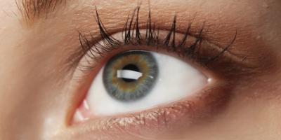 5 Vision Facts Your Optometrist Wants You to Know , Spencer, West Virginia