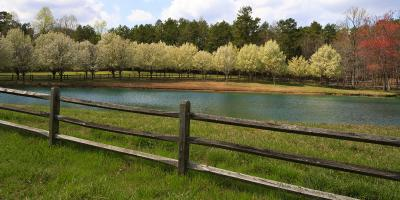 Your Guide to Split Rail Fencing, Anchorage, Alaska