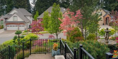 3 Essential Tree Service Tips for Spring, St. Charles, Missouri