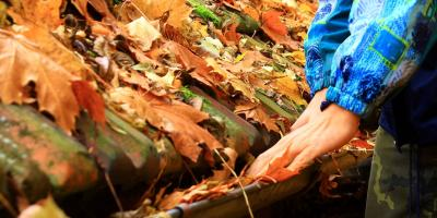 Why Gutter Cleaning Should Be on Homeowners' Fall Maintenance Lists, St. Paul, Minnesota