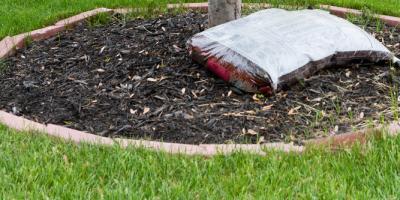 Mulch Service: Answering Your Mulch FAQs, Stuarts Draft, Virginia