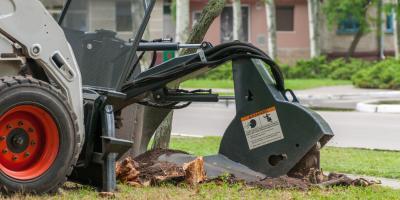 5 Reasons Why Stump Grinding Is Crucial, Waimea, Hawaii