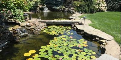 What to Consider When Adding a Backyard Pond, Sagamore Hills, Ohio