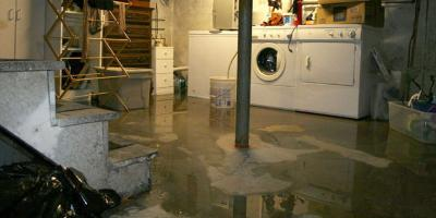 Why Should You Have Sump  Pump Coverage?, Freehold, New Jersey