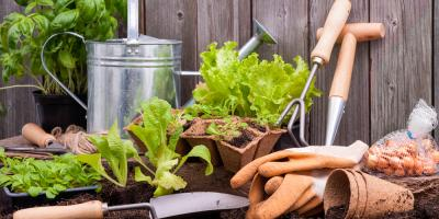 From Seeds to Bulk Mulch: 5 Things You Need to Start Your Garden, Quaker City, Ohio