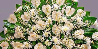 A Guide to Sympathy Flowers, Honolulu, Hawaii