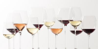 5 Tasting Room Tips to Select the Right Wine for Your Palate, Bronx, New York
