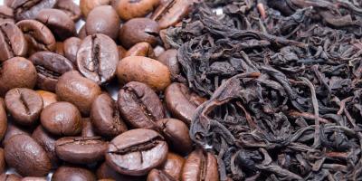 Tea vs. Coffee: Why Choosing Tea Is the Best Option, Honolulu, Hawaii