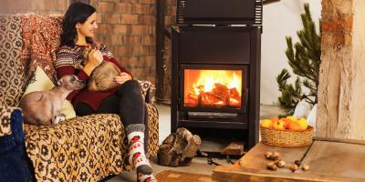 3 Tips for Keeping Your Home Free of Mice This Winter, 12, Tennessee