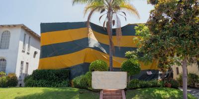 Termite Fumigation FAQ, Hilo, Hawaii