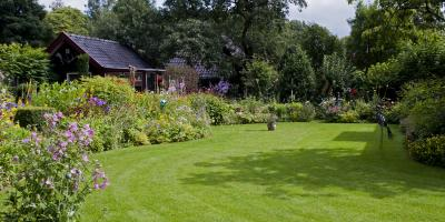Do's & Don'ts of Summer Lawn Care, Pittsford, New York